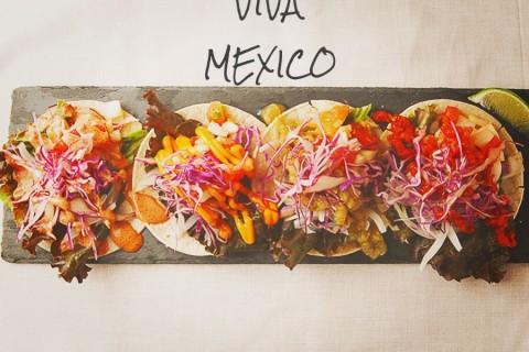 メキシコの主食であるトルティーヤに炒めたひき肉・チーズ・レタスなどを挟んで食べるタコスはお店のオススメの一品。